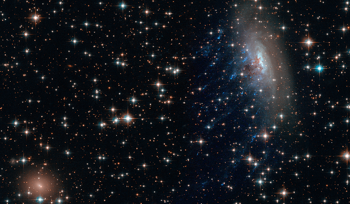 Galaxy Clusters
